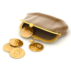 3d illustration of a purse and money