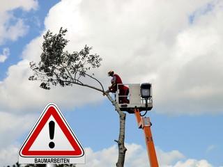 Baum – Achtung