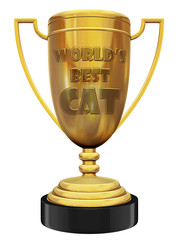 best cat trophy