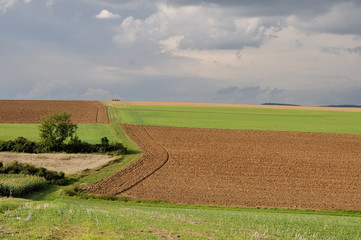 turingia, colori della campagna