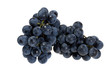 fresh picked concord grapes