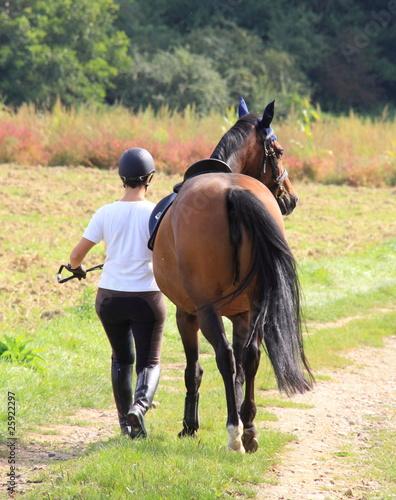 Promenade equestre