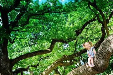 Happy cute girl sitting on branch huge tree