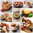 gastronomia di funghi porcini
