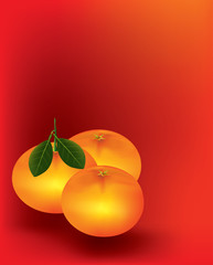 Mandarine orange on red background