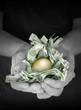 Golden Money Nest Egg Savings