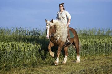 Reiterin auf Kaltblutpferd mit langer Mähne