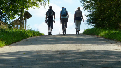 3 wanderer