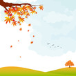 Autumn landscape colorful leaves and tree wallpaper