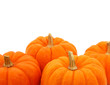 Group Of Orange Gourds Over White