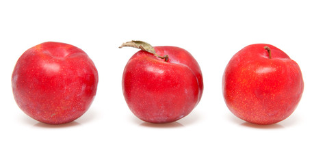 three red plums over white background