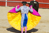 Matador and bull in bullfight. Madrid, Spain.