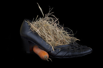 lady shoe with carrots and hay for Sinterklaas