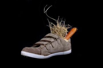 shoe with carrots and hay for Sinterklaas