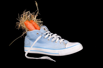 shoe with carrots and hay