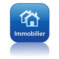 Bouton Web IMMOBILIER (agence immobilière propriété achat vente)