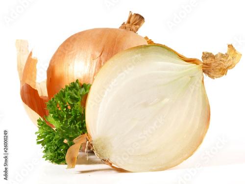 Zwiebel - halbiert
