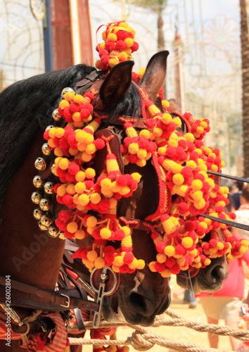 Dos caballos en la Feria de Jerez