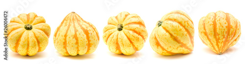 gourds border isolated on white background