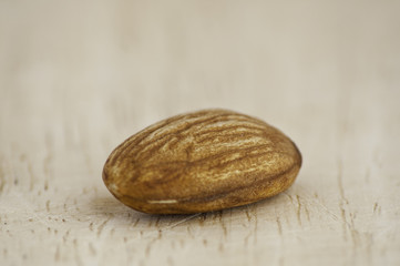 Still of a lonely almond nut