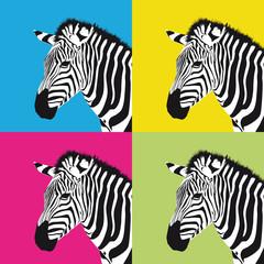 pop art zebra