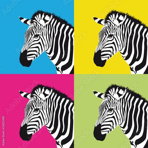 pop-art-zebra