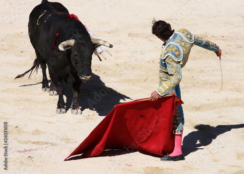 Canvas Stierenvechten corrida