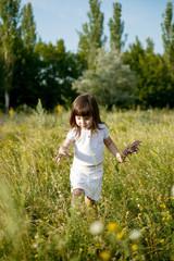 Маленькая девочка собирает цветы на лугу