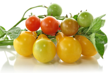yellow and red small tomatoes