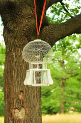 Cage with  bird on  tree