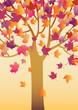 roleta: autumn tree