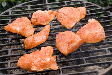 BBQ grill – chicken pork (not finished) – grate