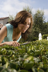 Close up of Hispanic woman trimming hedge