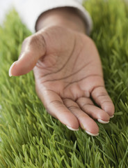 African womanÕs hand open in grass
