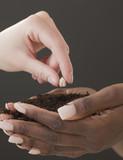 Woman planting seed in handful of soil