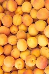 apricot, market-place