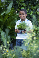 African boy carrying seedlings