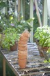 Stack of terracotta flowerpots on workbench in potting shed