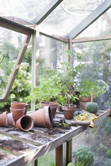 Overturned pots on workbench in potting shed