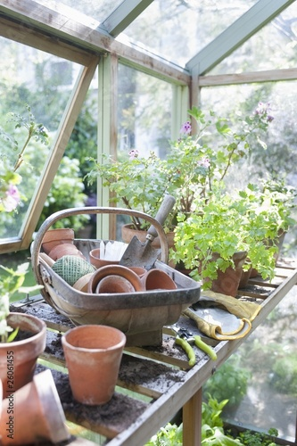 Gardening equipment on workbench in potting shed