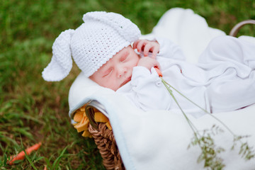 adorable newborn baby rabbit woth carrot