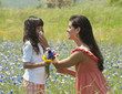 Mother wiping daughter's nose with tissue in field of wildflowers