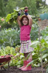 Mixed race girl holding radishes in garden