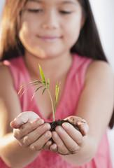Mixed race girl holding seedling