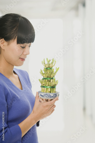 Chinese woman looking at bamboo plant