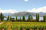Fototapety Landscapes of New Zealand
