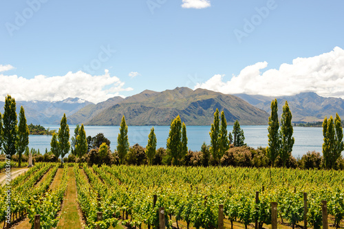 Fotobehang Nieuw Zeeland Landscapes of New Zealand