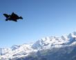Wingsuit Flug über den Bergen - 26103833