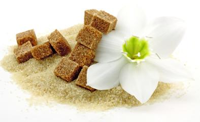 fleur de lys de l'Annonciation sur tas de sucre