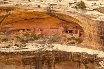 Anasazi Cliff Dwelling Ruins at Utah's Butler Wash